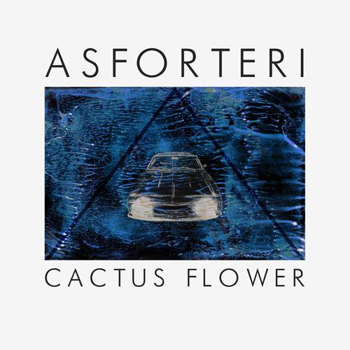 cactus-flower-ep-asforteri